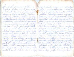 Stranice dnevnika Dušana Kosanovića | Stranice dnevnilka Kosanović Dušana