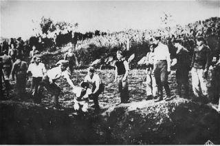 Оригинални снимак: усташки злочинци 30. jула 1941. године бацаjу жртву у неку од jама око Ливна