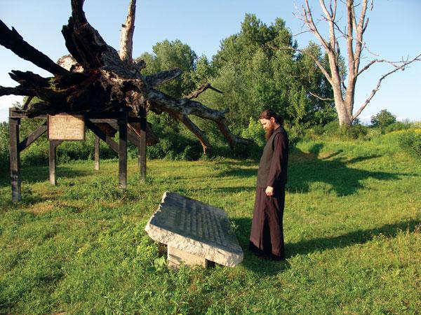 w.jasenovac.jpg