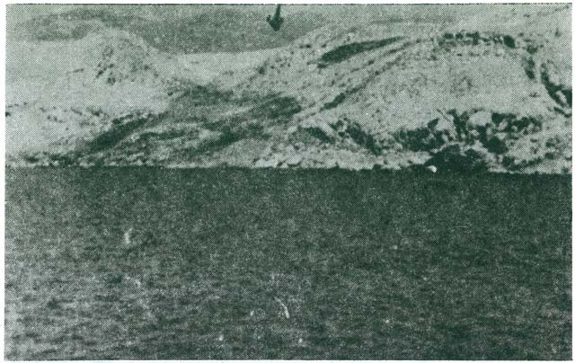 Italian photo, September 1941. Furnaža (above Malin), graves excavated by Italian soldiers, burning the victims on pyres.