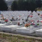 groblje-zejtinlik.jpg