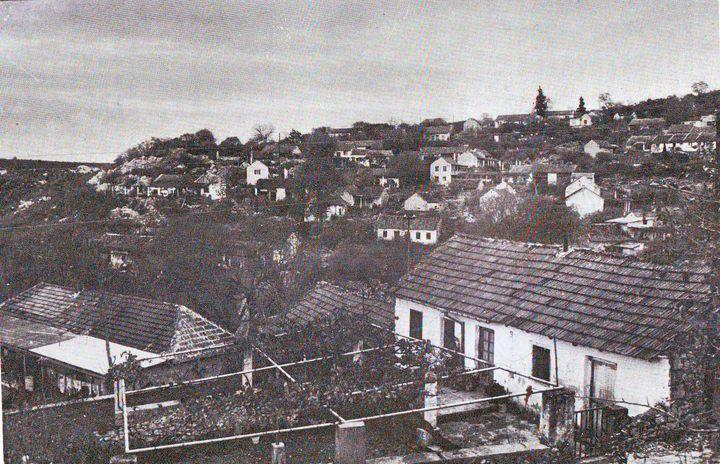 Панорама Пребиловаца пред Други свјетски рат
