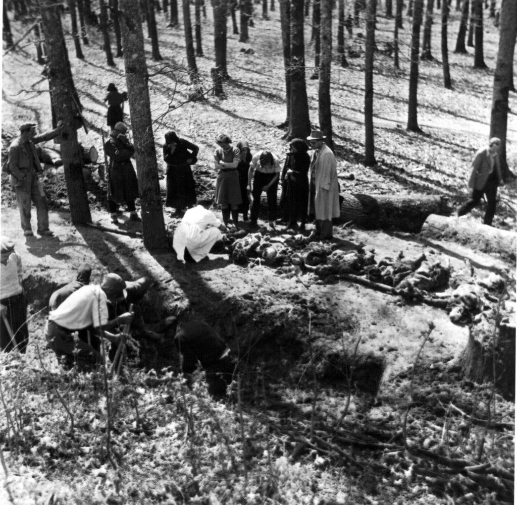 Ускочка шума - ексхумација