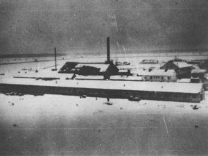 Јасеновац, 1941 - 1942 (photo: US Holocaust Memorial Museum)