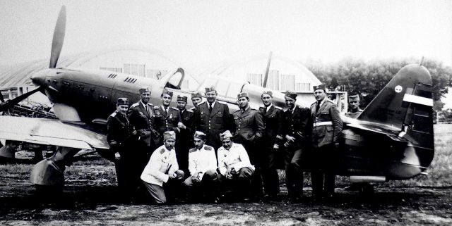 IK-3 piloti