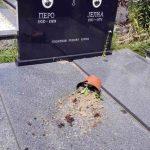 Православна капела и мјесно гробље у Осијеку, у општини Илиџа, били су поново на мети вандала који су разбили портал на капели и оштетили четири споменика, рекао је Срни парох блажујски јереј Дарко Даниловић.