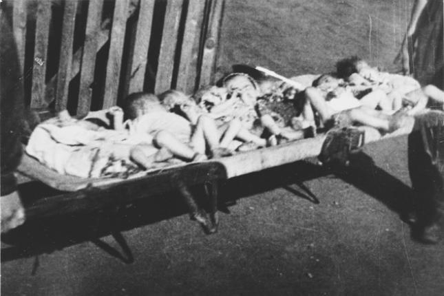 Побијена Србска деца у Логору за децу Јастребарско / фото: СлавицНет