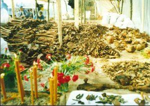 Kosti Srba iz jame Bivolje brdo