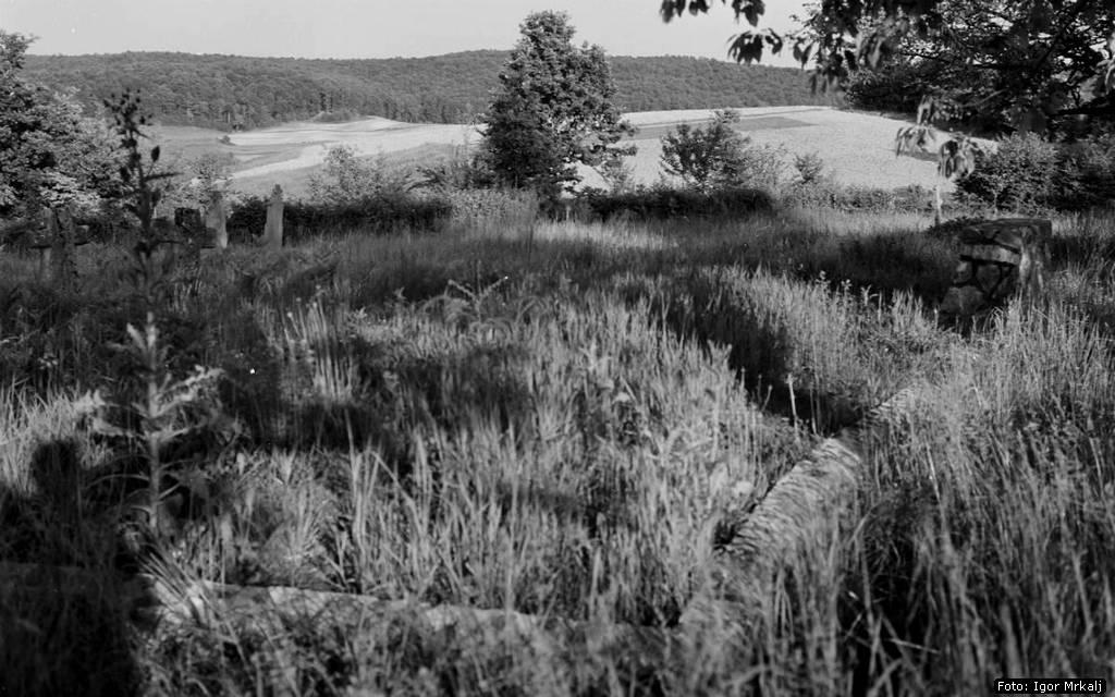 Мјесто страдања и заједничка гробница на православном гробљу Совињак у Горњем Таборишту, снимљено јуна 1961. Године