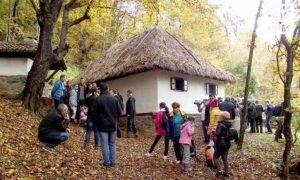 Mesto okupljanja mladih Foto: D. N. Petrović