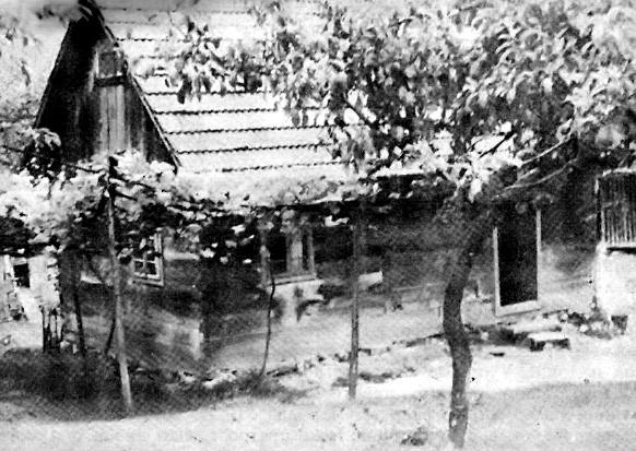 Кућа на кућишту гдје се родио Сава Мркаљ (Снимљено 1971. године)