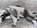 U knjizi na strani 144-a Srbin, oko 65 godina, ustaše ga ubile u okolini Gračaca, snimljeno 4.avgusta 1941. Lice užasno izmasakrirano od teških udaraca zadatih tvrdim predmetom.
