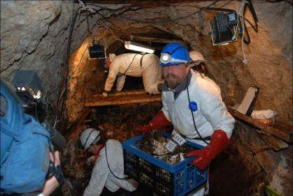 Barbarin rov, Slovenija, najveća masovna grobnica u Evropi posle Drugog svetskog rata, 2009.