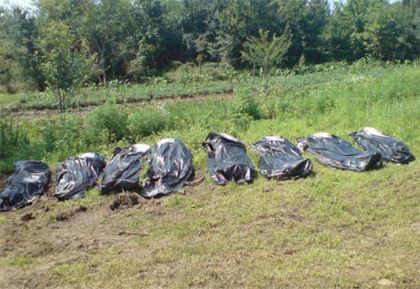 Ekshumirani posmrtni ostaci članova porodice Vuković iz Medara