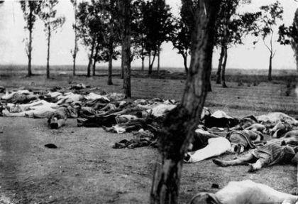 Žrtve genocida nad Jermenima, jermenska oblast Anadolije 1915.