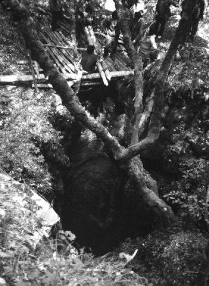 Grotlo jame Ravni dolac pola veka kasnije, juna 1991. godine