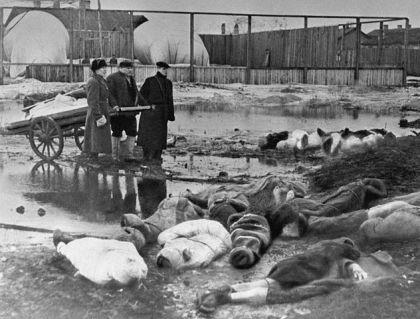 Sahrana stradalih stanovnika Lenjingrada tokom opsade grada