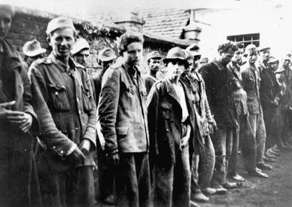 Zarobljene Ustaše u Odžaku 27. maja 1945. (Foto www.znaci.net)