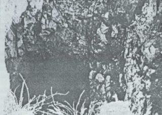 Grotlo jame Bikuše