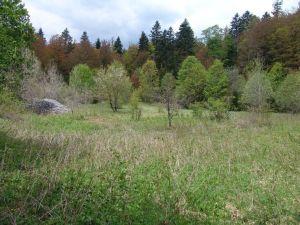 Mjesto logora Jadovno 2012. godine