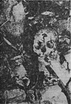 Ostaci kostiju otkriveni prije dvadesetak godina u Šaranovoj jami, u koju su ustaše bacile ubijene i žive zatočenike logora Jadovno pokraj Gospića. (snimio speolog Srećko Božićević)