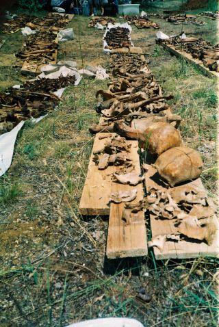 Povađene kosti sa gubilišta Prolog kod Livna