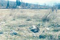 Smetljište na mjestu razrušenog spomen hrama u Prebilovcima - Smetljište na mjestu razrušenog spomen hrama u Prebilovcima