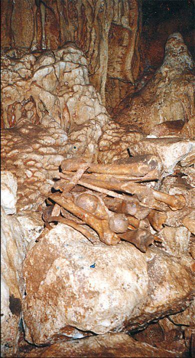 U jamama je ispod gomile kamenja koje su ustaše gurale za žrtvama nađeno preko 1000 kostura