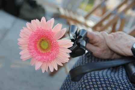 NJEGOVIC_PHOTOGRAPHY.JPGr.JPG