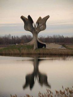 cvijet_jasenovac1.jpg