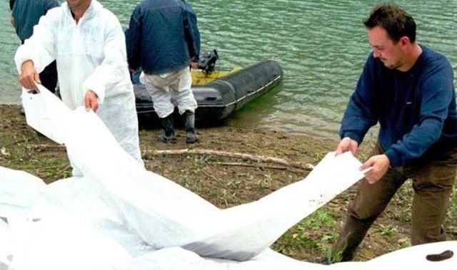 E<span>kshumacija iz jezera Perućac</span>