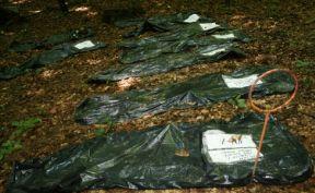 https://jadovno.com/tl_files/ug_jadovno/img/preporucujemo/2012/ekshumacija-oluja.jpg