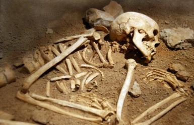 https://jadovno.com/tl_files/ug_jadovno/img/preporucujemo/2014/grobnica-kosti.jpg