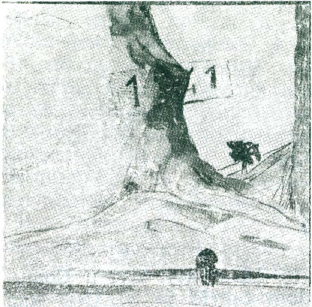 Mario D'Anna: Slana