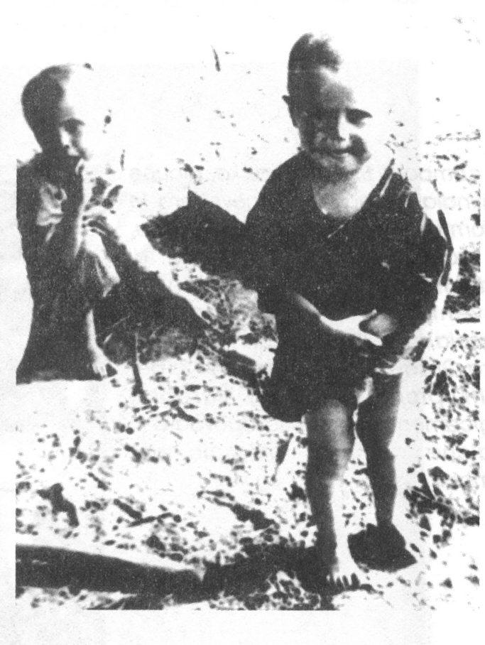 Bilogora i Grubišno Polje 1941 - 1991.