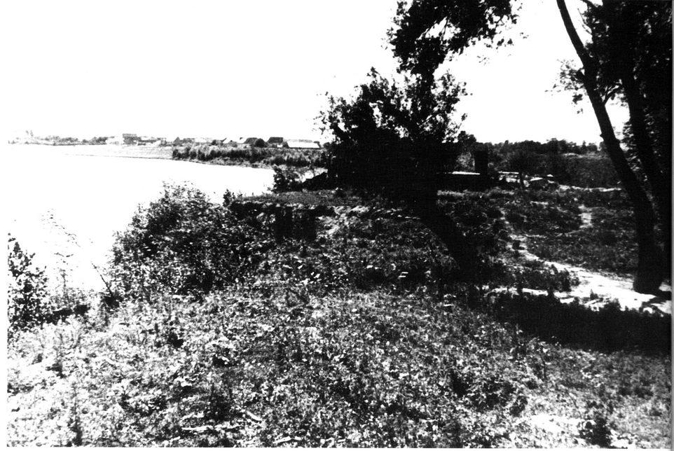 Gaj slutnje - put kojim su logoraši sprovođeni prema skeli, a zatim na likvidaciju u Donju Gradinu, jun 1945.