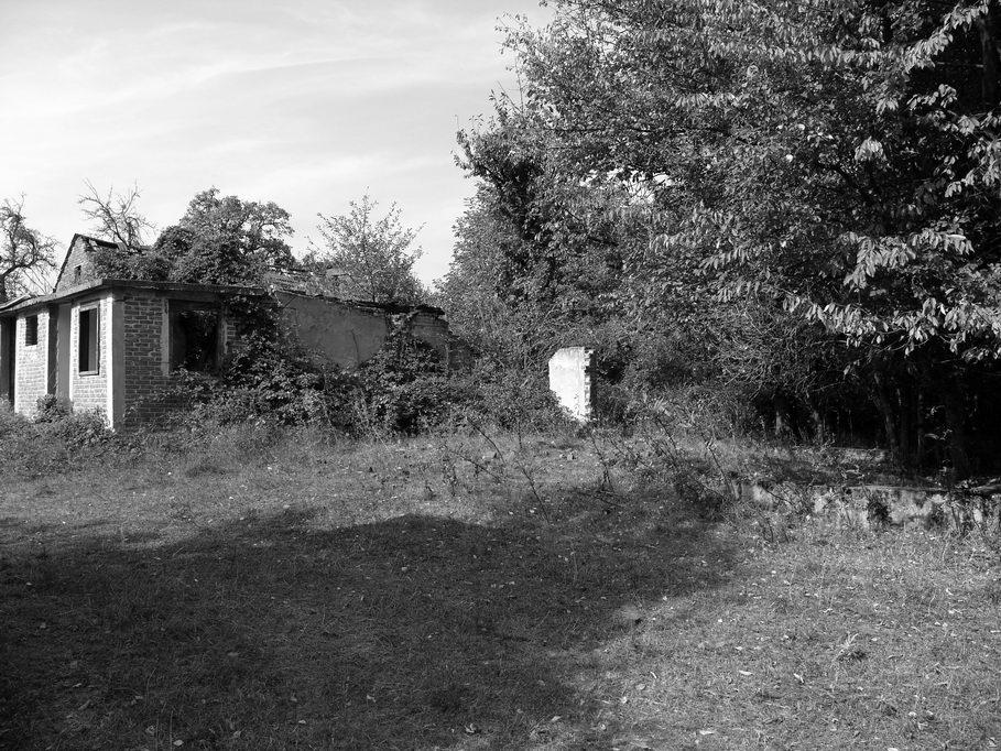 Vila bilogorska 2009. godine