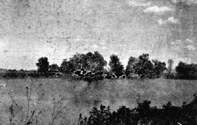 Pogled na logor sa Gradine