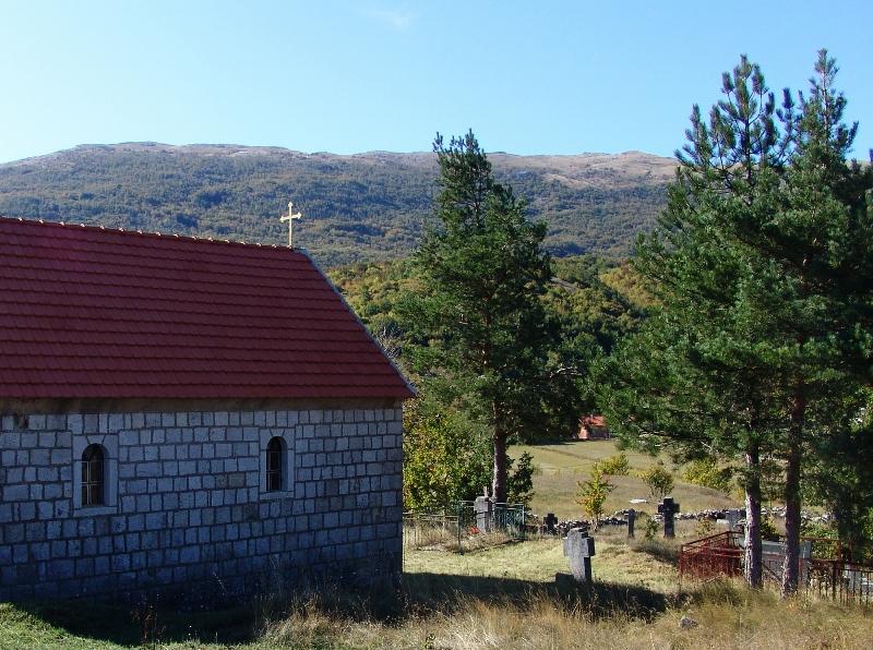 Црква Покрова Пресвете Богородице у Доњим Руjанима