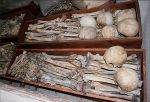 Kosti mučenika