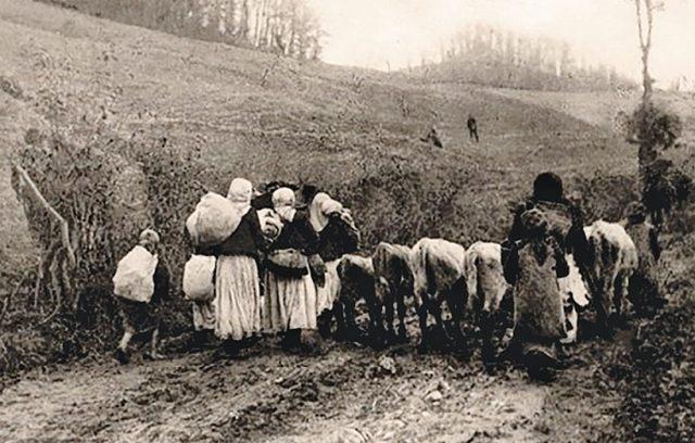 Narod iz Pocerine izmiče ispred austrougarske armade
