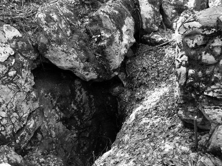 Šaranova jama