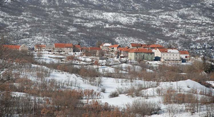 Banjani  Foto: Novosti