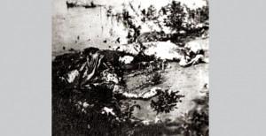 Жртве покоља у Шајкашкој