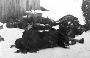 Žrtve Novosadske racije