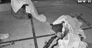 Masakr u Dvoru