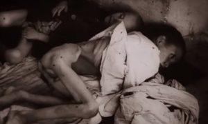 Stravične scene iz Jasenovca, gde je živote izgubilo 74.762 dece mlađe od 14 godina
