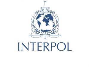 Interpol Foto: arhiv