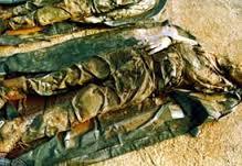 Posmrtni ostaci srpskih vojnika