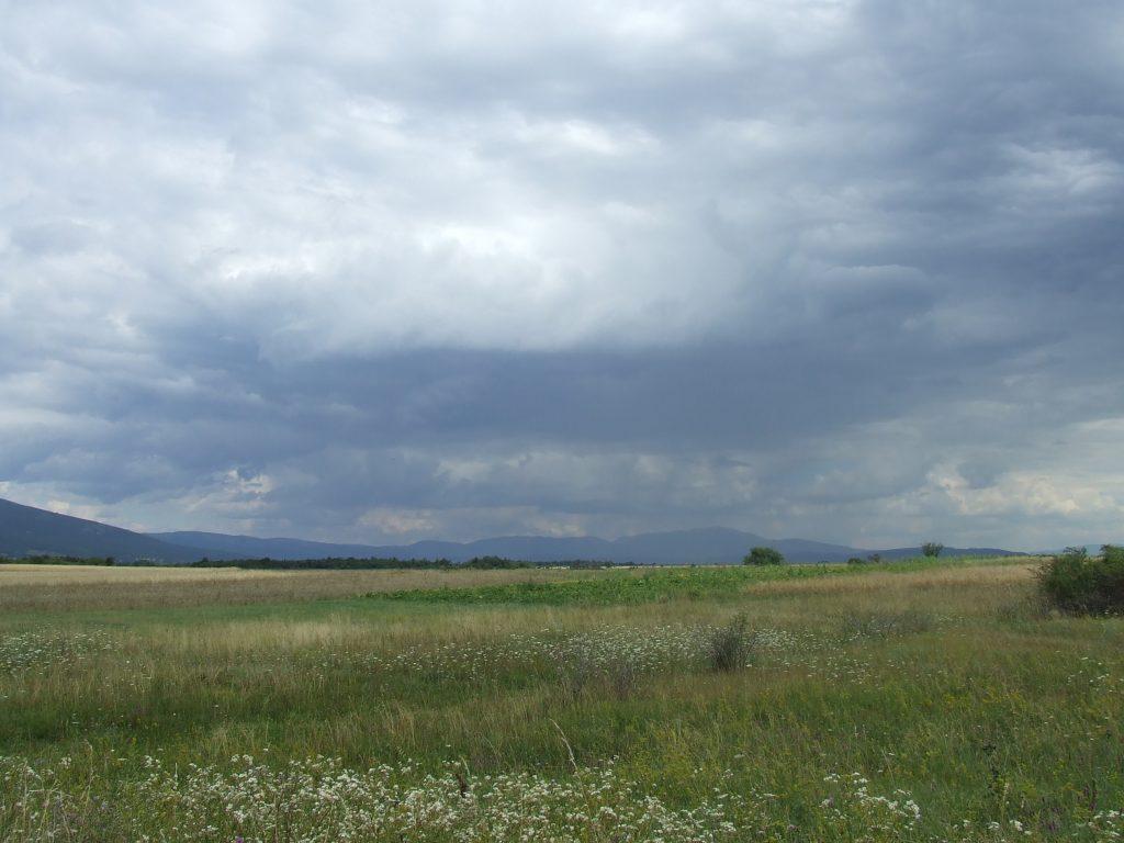 Trnovac